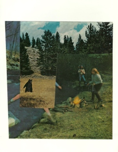 """""""Bearly There,"""" collage with vintage tampon ad, 2015"""