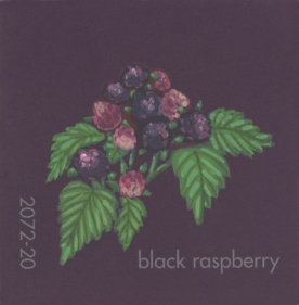 """""""Black Raspberry,"""" acrylic on commercial paint chip, 2 x 2in, 2017"""