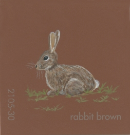 """""""Rabbit Brown,"""" acrylic on commercial paint chip, 2x2in, 2017"""