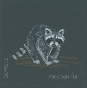 """""""Raccoon Fur,"""" acrylic on commercial paint chip, 2x2in, 2017"""
