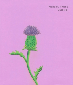 """""""Meadow Thistle,"""" acrylic on commercial paint chip, 3.5 x 3in, 2016"""