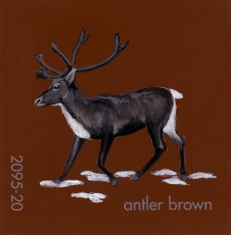 antler brown541