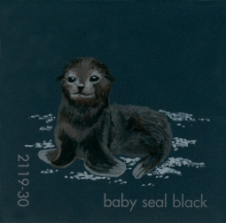 baby seal black600