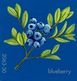 blueberry279
