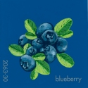 blueberry313
