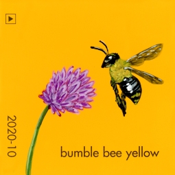 bumble bee yellow3274