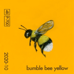 bumble bee yellow718