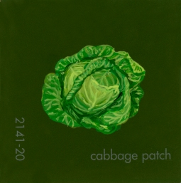 cabbage patch390
