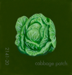 cabbage patch708