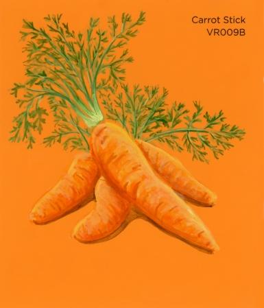 carrot stick391