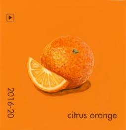 citrus orange425