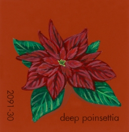 deep poinsettia569