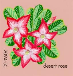 desert rose577