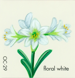 floral white570