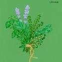 herbes de provence620