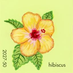 hibiscus429