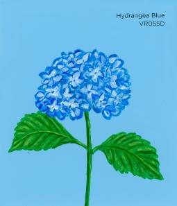 hydrangea blue324