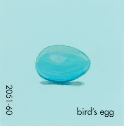 in the forest birds egg317