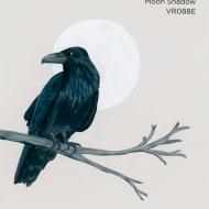 moon shadow453
