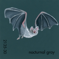 nocturnal gray603