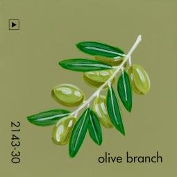 olive branch626