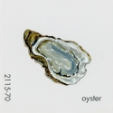 oyster308