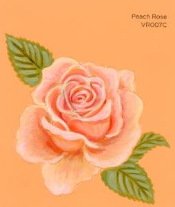 peach rose634