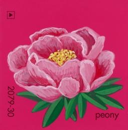 peony328