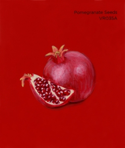 pomegranate seeds457