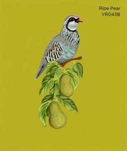ripe pear565