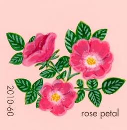 rose petal721