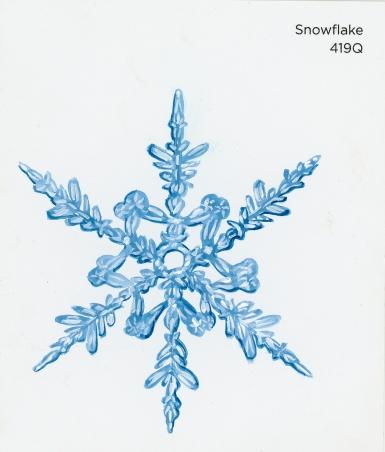 snowflake616