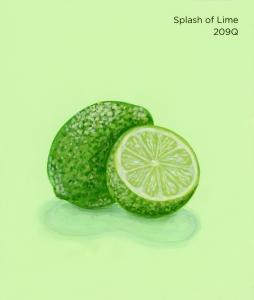 splash of lime660