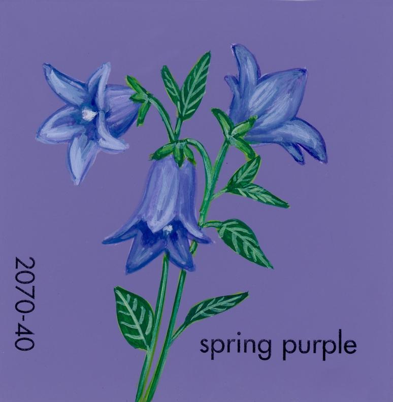 spring purple691