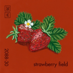 strawberry field580