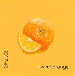 sweet orange629