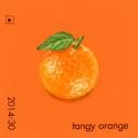 tangy orange385
