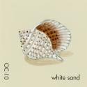 white sand503