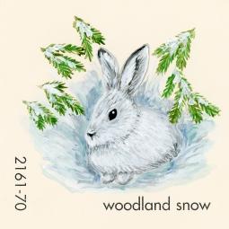 woodland snow607
