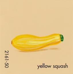 yellow squash707