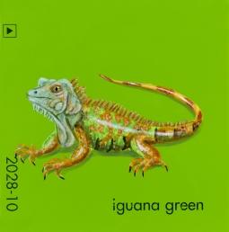 iguana green751
