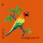 orange parrot750