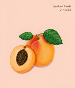 apricot blush761