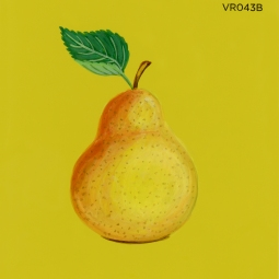 ripe pear759