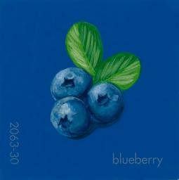 blueberry794