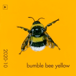 bumble bee yellow820