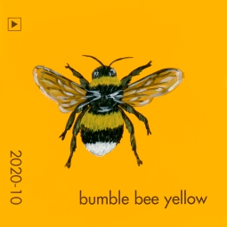 bumble bee yellow826