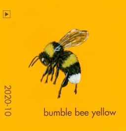 bumble bee yellow827