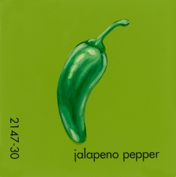 jalapeno pepper795