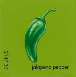 jalapeno pepper795